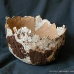 Mushroom Paper Bowl