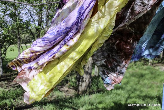 arts-quest-rita-st-amant-campground-silk-dyeing