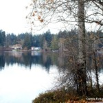 Calm waters on Shawnigan Lake