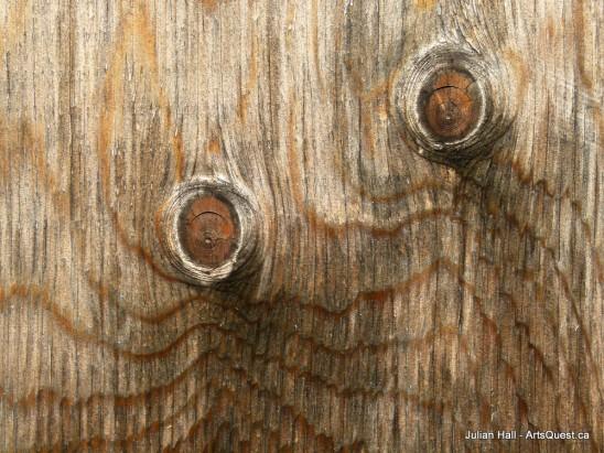 arts-quest-julian-hall-plywood-greenhouse-door