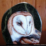 arts-quest-karen-singleton-rock-painting-barn-owl