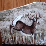arts-quest-karen-singleton-rock-painting-white-tail-deer