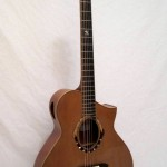 arts-quest-dan-richter-dragonfly-guitars-2