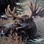 arts-quest-karen-singleton-canvas-painting-moose