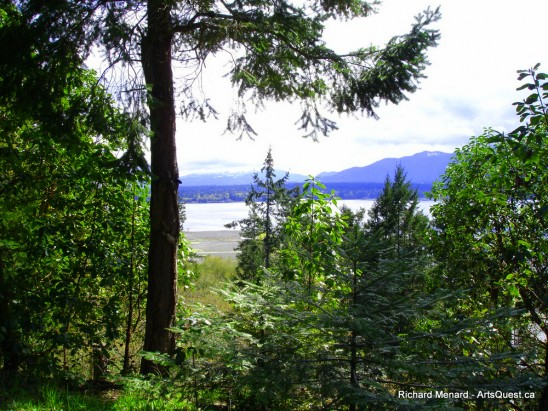 arts-quest-richard-menard-backyard-view_PS