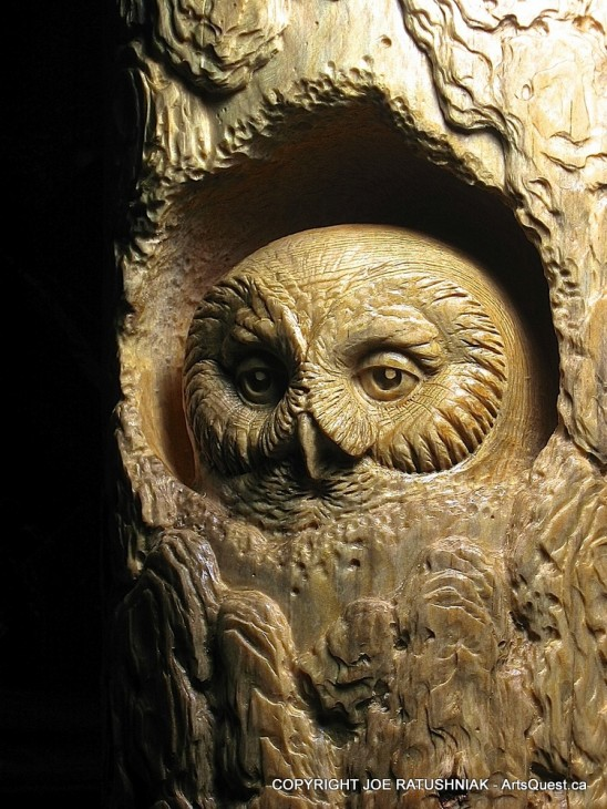 arts-quest-joe-ratushniak-owl