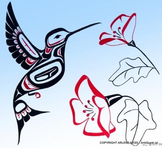 Hummingbird Dreams