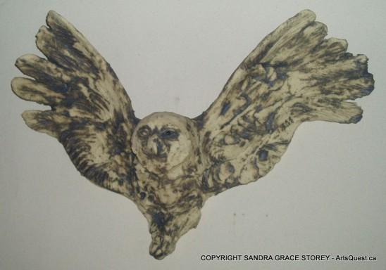 Messenger Snowy Owl